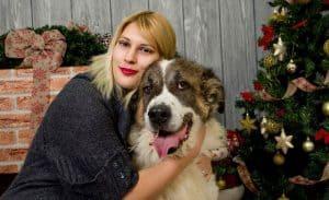 Hunde nyder julen